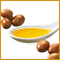 COMPOSANTS : ARGAN
